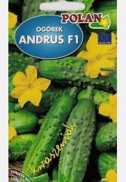 Agurkai ANDRUS F1 trumpavaisiai