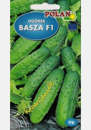 Agurkai BASZA F1 trumpavaisiai